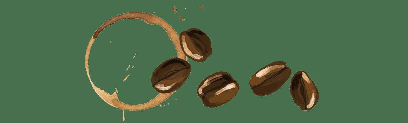 Coffee Bean Stain